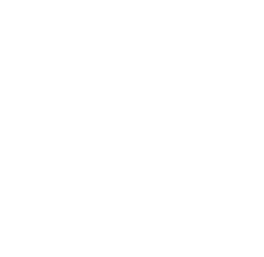 PV logo-white-scaled@0.25x